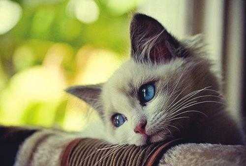 心情郁闷时怎么办,心情郁闷的时候怎么办呢··