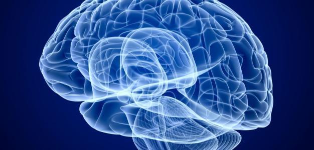大脑神经紧张,大脑神经太紧绷了,怎么松弛?